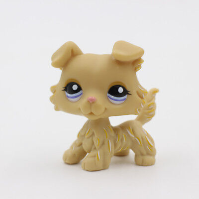 Littlest Pet Shop LPS 1194 Cream Yellow Collie Dog Puppy Kids Gift Collection AS