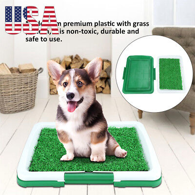 Pet Potty Trainer Grass Mat Dog Puppy Cat Training Pee Patch Pad Toilet Indoor