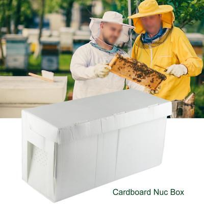 Cardboard Frame Nuc Box Bee Hive Bee Nuc Beekeeping Beekeeper Equipment Tool