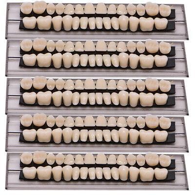 140pc 5set Dental Denture Acrylic Resin Full Set Teeth Upper Lower Shade 23a2