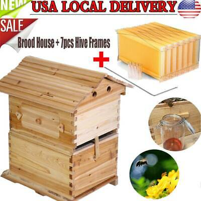 Cedarwood Super Brood Beekeeping Box With 7pcs Auto Flowing Honey Hive Frame New
