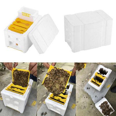 Bee Honey Beehive Foam Frames Beekeeping Kit Bee Hive King Pollination Box Hot
