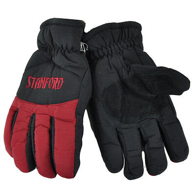 NCAA Stanford Cardinals Two Tone Winter Snow Ski Gloves Thermal Insulation L/XL -
