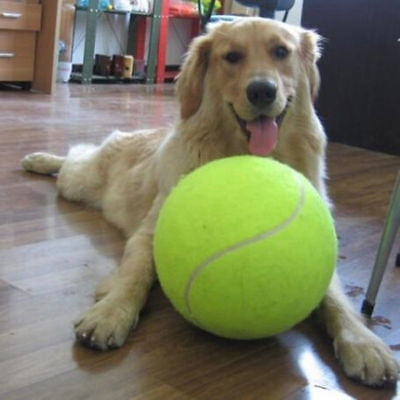 24CM Big Inflatable Tennis Ball Giant Pet Toy Tennis Ball Dog Chew Toy TP