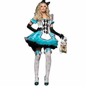 Alice in Wonderland Costume Size 14 Highland Park Gold Coast City Preview