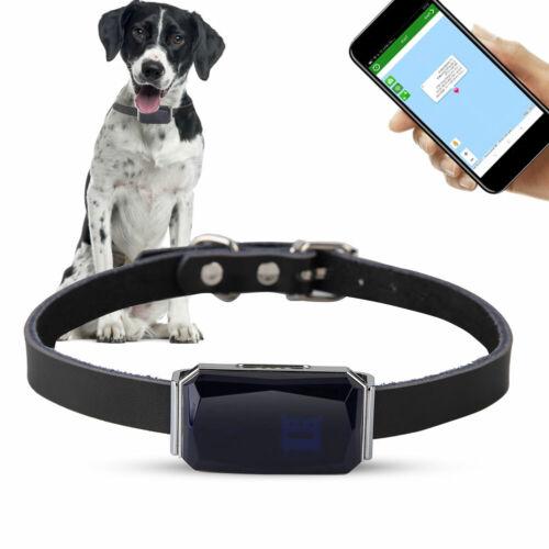 Hund Katze Mini Tracker Halsband Peilsender Tracking Hundehalsband Locator IP67