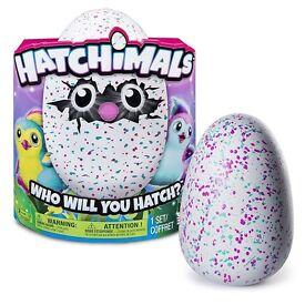 Hatchimals Egg Teal
