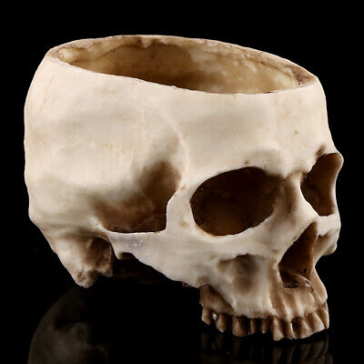 Skull Head Flower Planter Container Pot Decoration Modern Design Artistic And