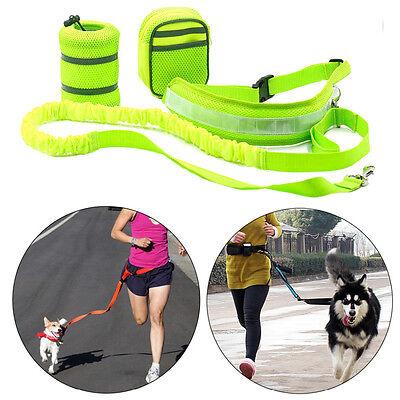 hundeleine joggingleine