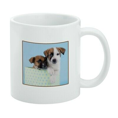 Jack Russell Terrier Puppies Dogs Gift Box White Mug for sale  Shipping to Canada