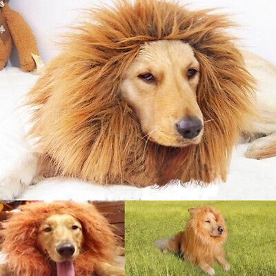 PET COSTUME LION EAR MANE WIG FOR DOG HALLOWEEN CLOTHES FANCY DRESS UP UK ORNATE