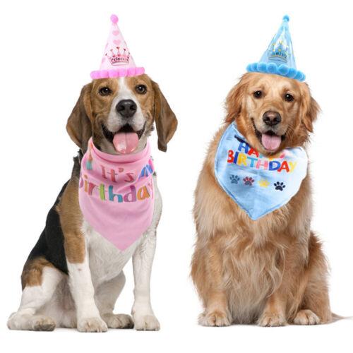 Haustier Hund Katze Geburtstag Hut Kopfbedeckung Kopftuch Halstuch Party Kostüm