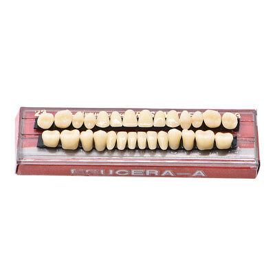 28pc 1set Dental Shade 23 A3 Denture Acrylic Resin Full Set Teeth Upper Lower