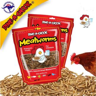 Poultry Meal Worms - Dine a chook.