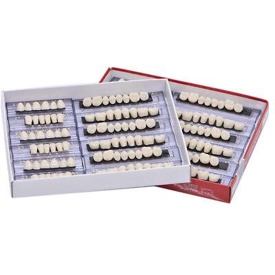 168pc Shade A1 Denture Acrylic Resin 24 Plate Full Set Teeth Upper Lower Dental