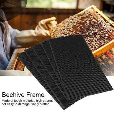 Auto Honey Beehive Frames Beekeeping Tool Kit Bee Hive King Box Pollination Box