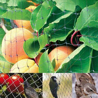 4mx10m Anti Bird Netting Net Mesh Fruit Crop Plant Tree Vineyard Garden Frame