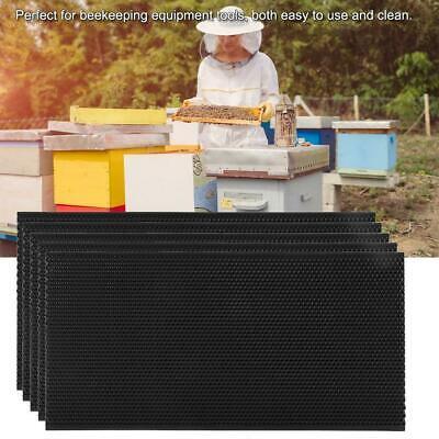 5pcs Auto Honey Beehive Frames Beekeeping Tool Kit Bee Hive Pollination Box