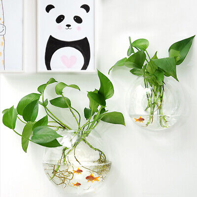 The Wall Hanging Mounted Pet Fish Tank Bowl Aquarium Decoration Planter