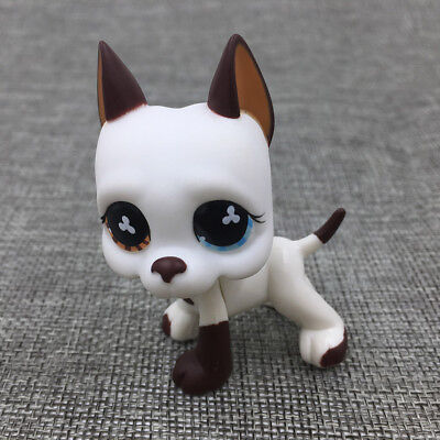 Littlest Pet Shop #577 GREAT DANE DOG Flower Eyes Puppy Toys RARE Hasbro Gift To