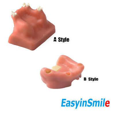 Easyinsmile Maxillary Sinus Lift Practice Teach Dental Teeth Model Ab Style