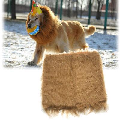 Kostüm Hund Löwenmähne Mähne Löwe Perücke Halloween Lion - Lion Halloween Kostüm