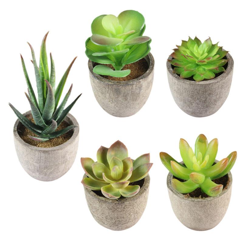 Artificial Succulents Plant Garden