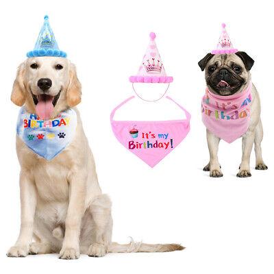 Haustier Hund Katze Geburtstag Hut Kopfbedeckung + Bandana Halstuch Set (Kostüm Haustier)