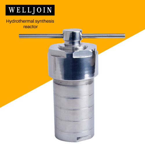Hydrothermal Autoclave Reactor with Chamber Hydrothermal Synthesis 200ml