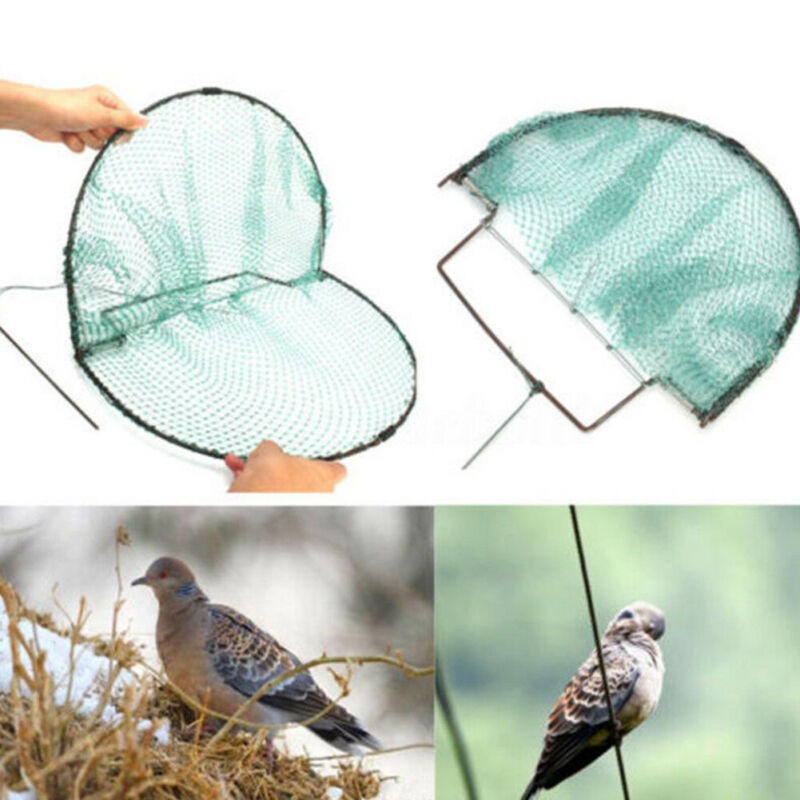 Sparrow Bird Pigeon Quail Humane Live Catching Net Trap Hunting Mesh 49X30cm