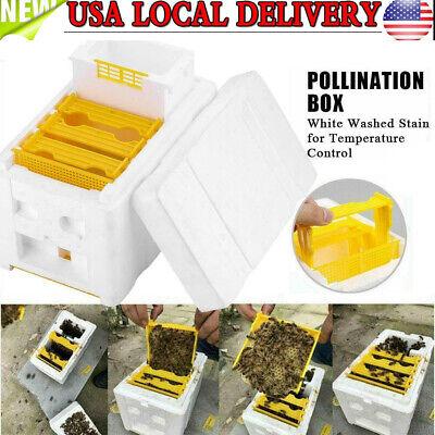 Harvest Bee Hive Beekeeping King Box Pollination Box Foam Beekeeper W Honeycomb