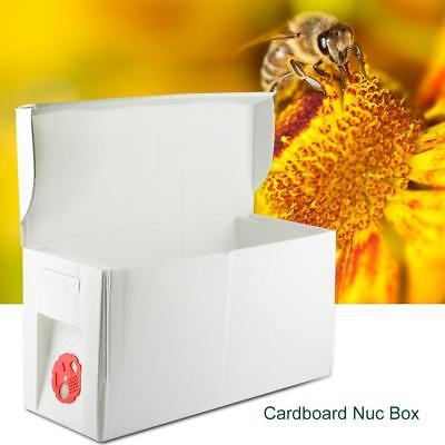 Cardboard 5 Frame Nuc Box Bee Hive Bee Nuc Beekeeping Beekeeper Equipment Tool