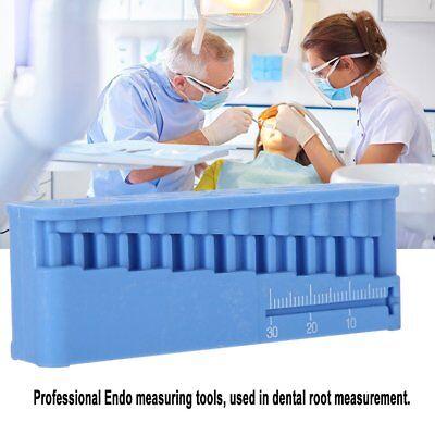 1pc Dental Endo Measuring Block Tools Accessory Files Holder Ruler Autoclavable
