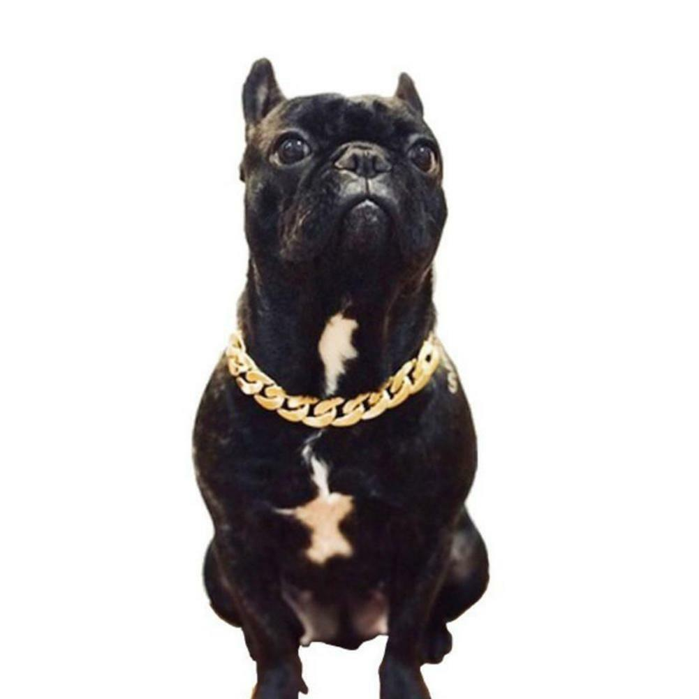 Pet Choke Chain Gold Silver Collar Necklace Small Cat Dog Fr