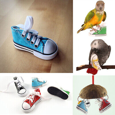 Random Color Games Standing Cage Hanging Sneakers Shape Mini Chewing Bird Toy