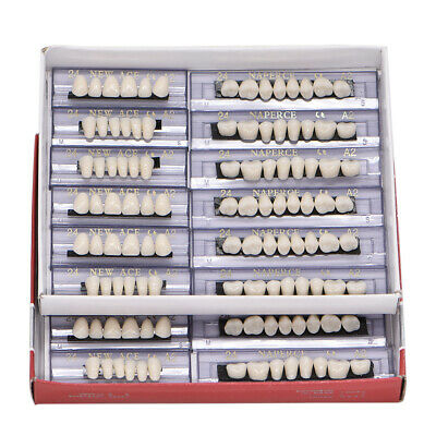 168pc Dental Acrylic Resin Denture 24 A2 Full Set Teeth Upper Lower Shade Tooth