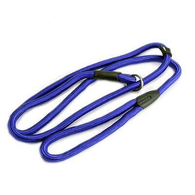 Nylon Rope Dog whisperer Style Slip Train Leash Lead Collar Blue