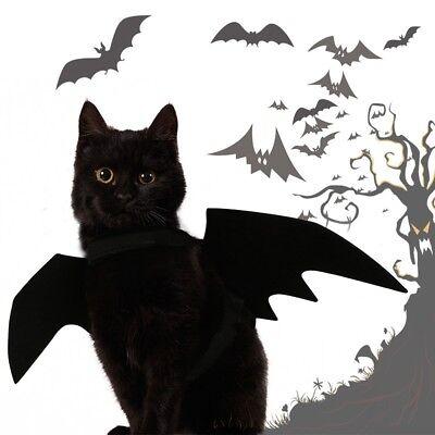 Haustier Hund Katze Fledermausflügel Halloween Nette Bat Wings Kostüm Schwarz (Fledermaus Flügel Kostüm Hund)