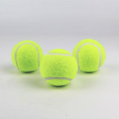 3 Tennis Balls Sports Tournament Outdoor Fun Cricket Beach Dog Activity Game Toy