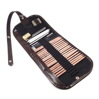 29 Pcs Sketching Pencil Set Charcoal Extender Eraser Cutter Drawing Art Kit Well Art Pencils & Charcoal