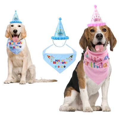 Haustier Hund Katze Geburtstag Hut & Halstuch Party Kostüm Kopfbedeckung Bandana