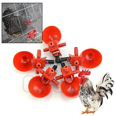 5Pcs  Feed Automatic Bird Coop Poultry Chicken Fowl Drinker Water Drinking Cups