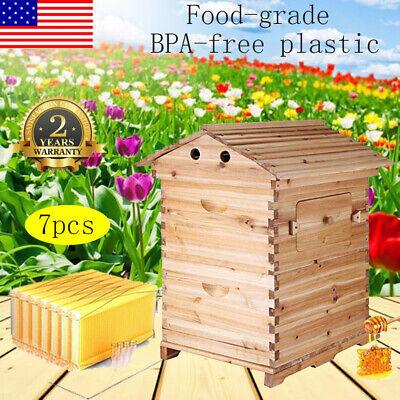 Cedarwood Beekeeping Brood Beehive Box 7pcs Auto Run Flowing Honey Hive Frame