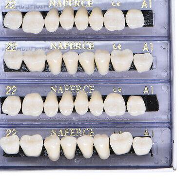 168 Pc Dental Acrylic Resin Denture Shade 22 A1 Full Set Teeth U L Tooth Us