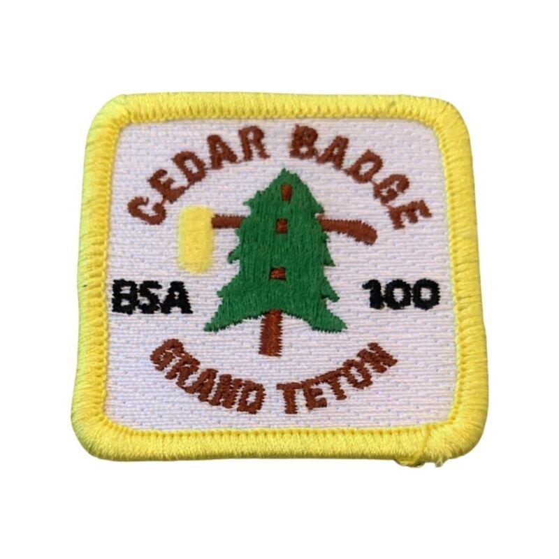 Cedar Badge Grand Teton BSA 100 Boy Scout Badge Uniform Patch