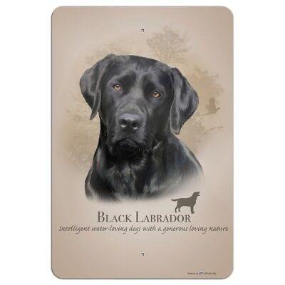 Black Lab Labrador Dog Breed Home Business Office Sign