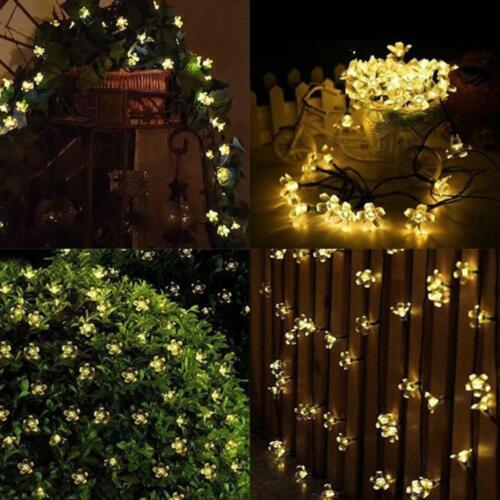 50 LED Solar Cherry Light String Holiday Christmas Decoratio