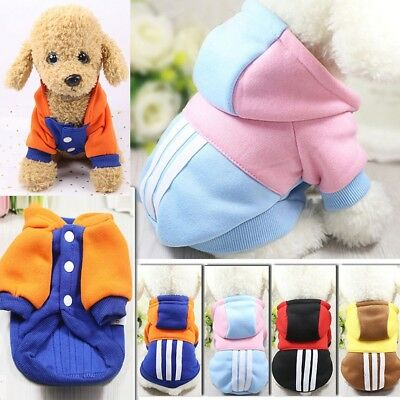 e Hundekleidung Winter Kapuze Hundejacke Hundemantel Kostüm (Katze Kostüme Haustiere)