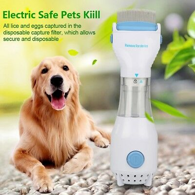 Head Vacuum Lice comb Electric Capture Pet Cat Dog Filter Remover Lice Cleaning