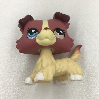 LPS#1262 Purple Cream Hair Dog Littlest Pet Shop Collie Dog Hasbro Kids Gift Toy